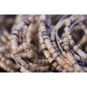 Fil de perles - coquillage nacré - brun clair