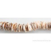 Moreaux de coquillages rectangulaire - beige blanc