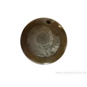 Fossile d'ammonite emprisonné dans la pierre